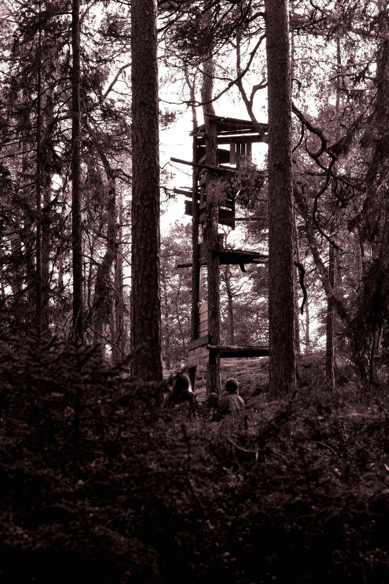 Tre barn i skogen, svartvitt