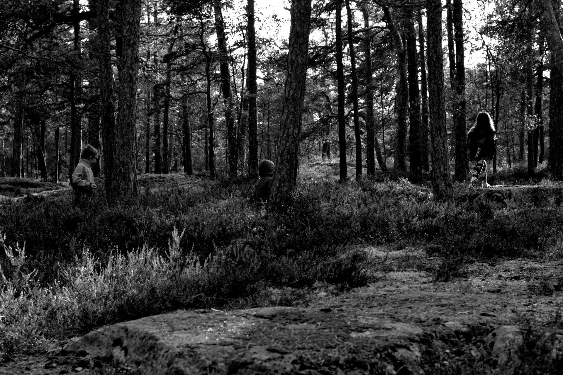 Barn i skogen svartvitt