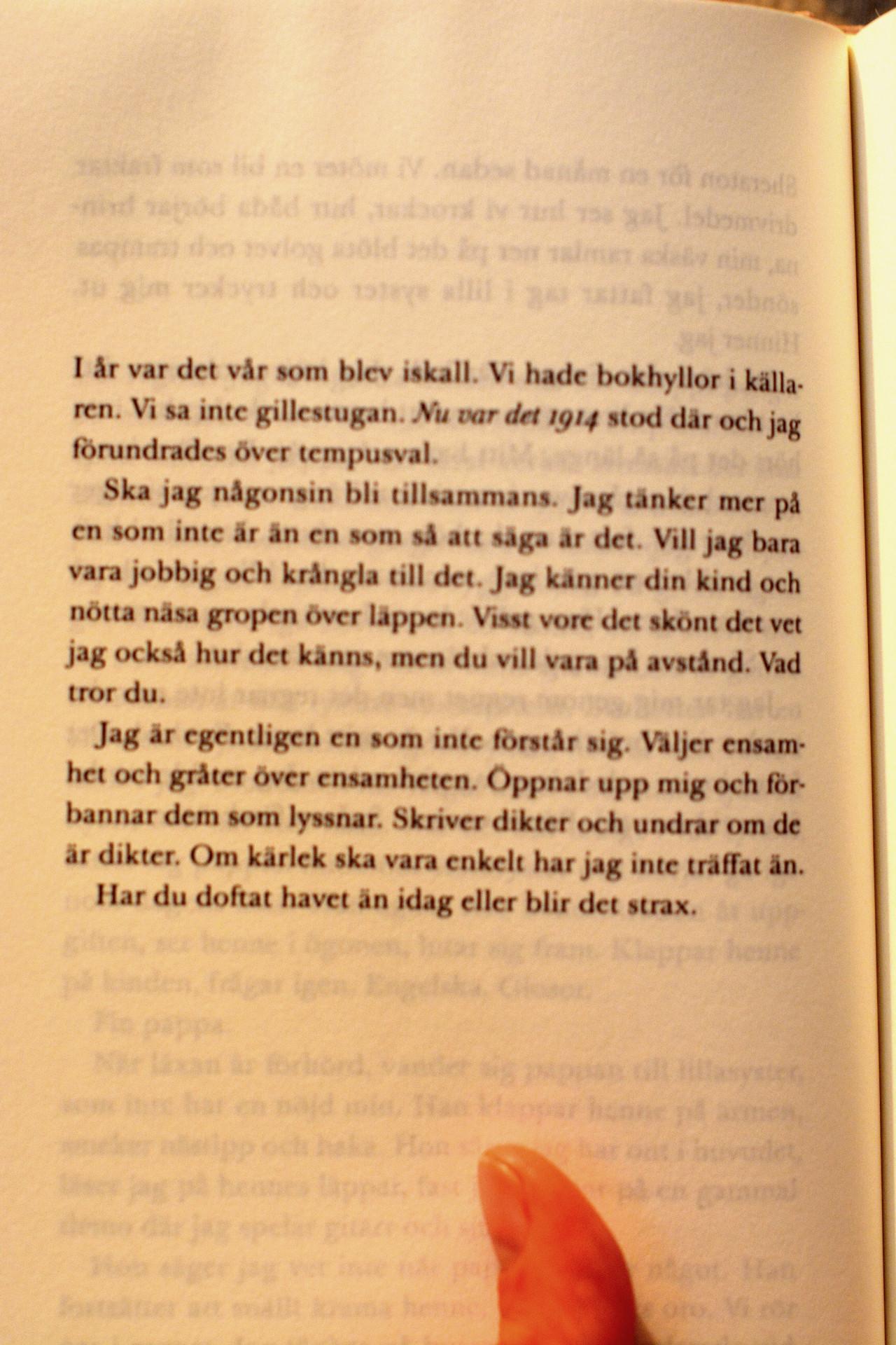 citat ur Anna Järvinens dröm natten till idag