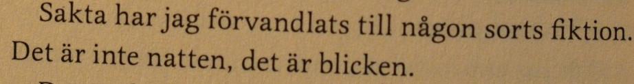 citat ur I slutet borde jag dö av Hannele Mikaela Taivassalo