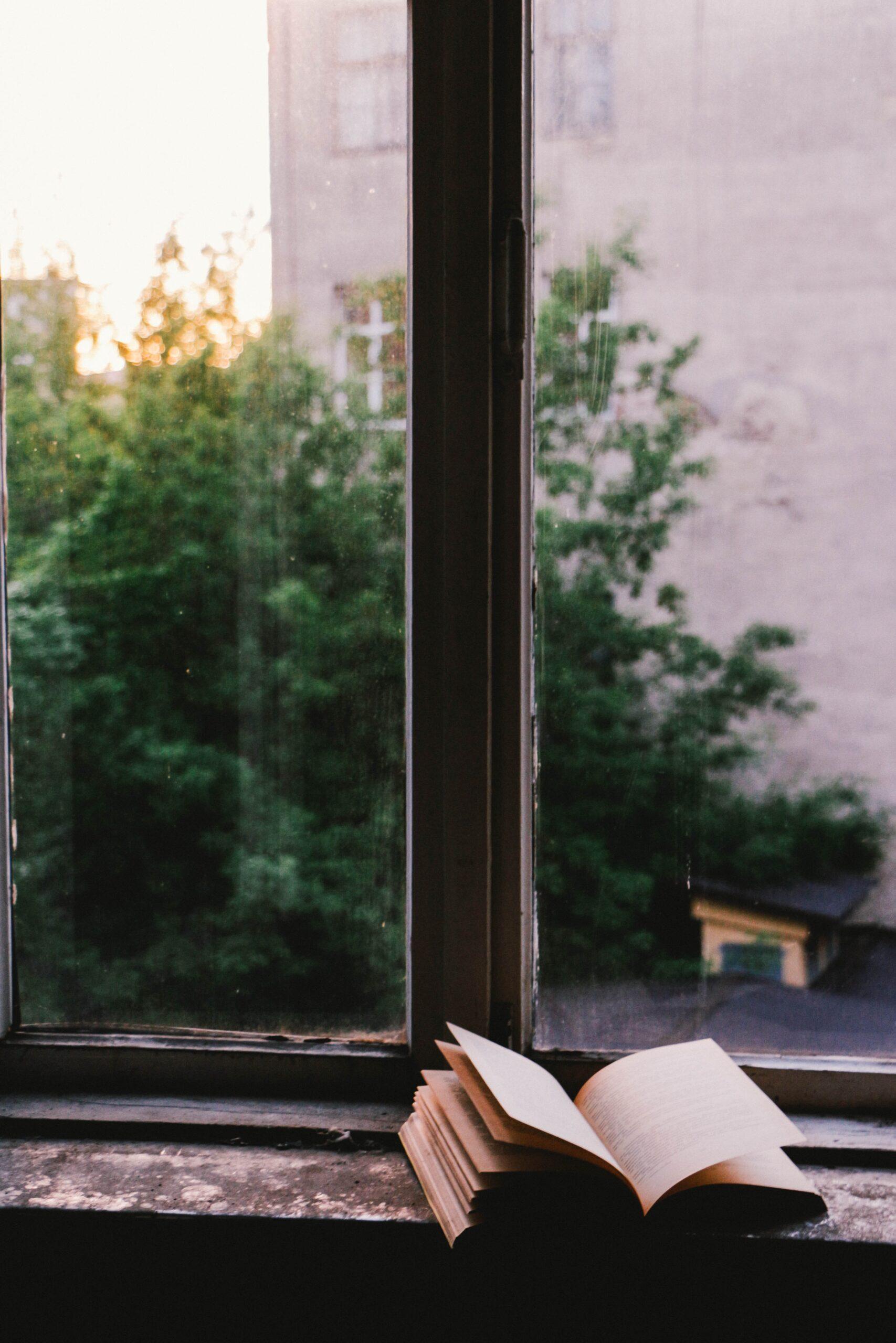 Bok i fönster