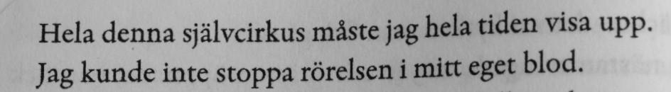 Citat ur Eufori av Elin Cullhed