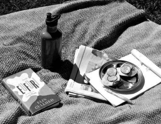 Eufori av Elin Cullhed, vattenflask från Klean kanteen, ett exemplar av Hufvudstadsbladet, skrivblock och penna samt tallrik med ostsmörgåsar, allt på en picknickfilt. Svartvit bild.